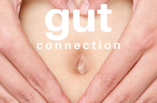 Gut Connection Blog Post
